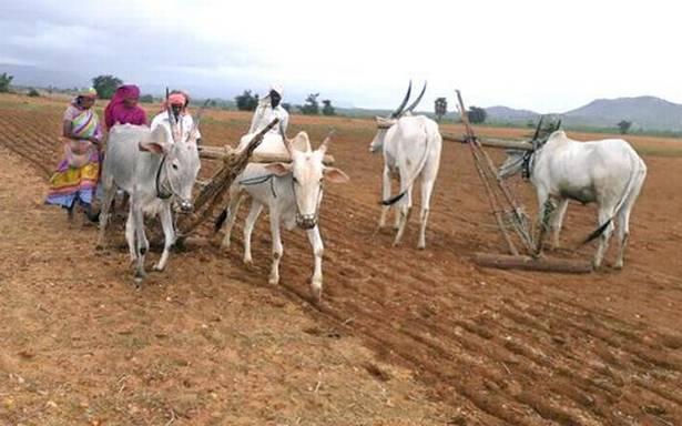 Movement launched seeking irrigation facility for drought-prone Kudligi
