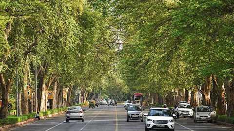 To beat dust pollution, Delhi begins greening its roads