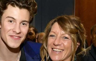 She Stans! Shawn Mendes' Mom Teases Camila Cabello Dating Rumors