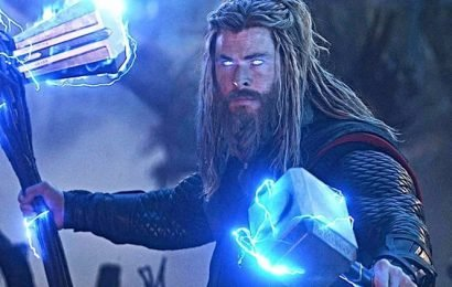 Fat Thor from Avengers Endgame gets an official name