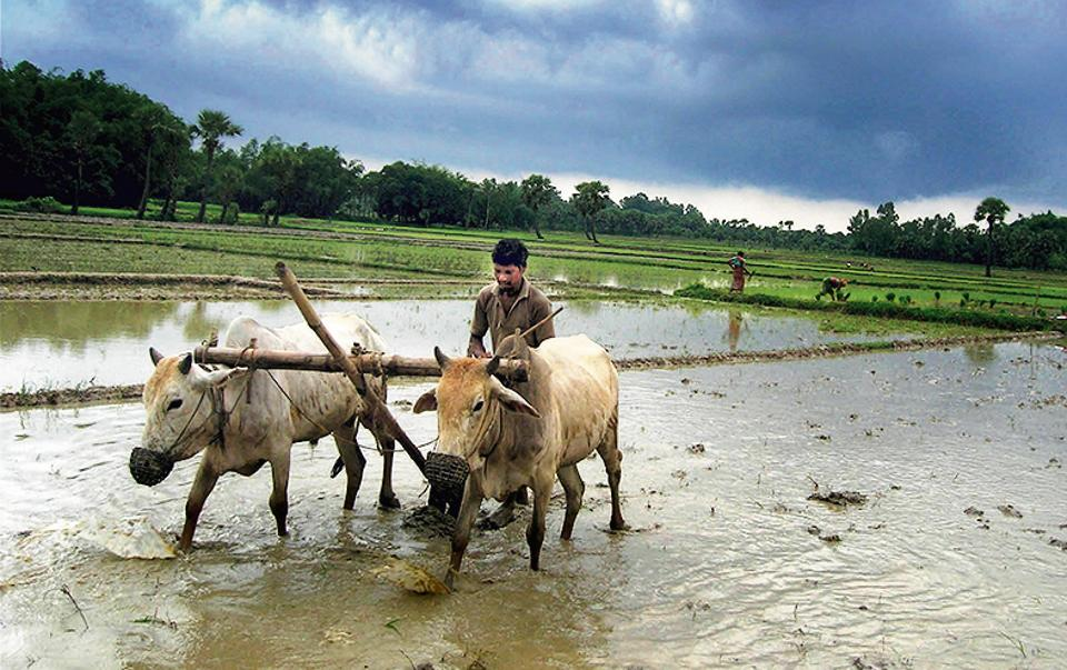 India's future prosperity depends on extending opportunities to farmers