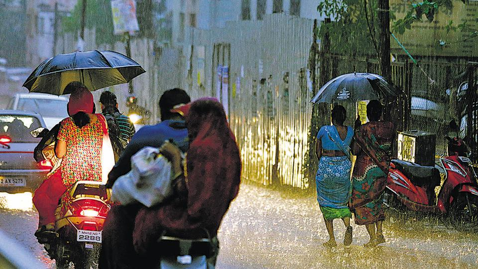 Pre-monsoon showers in Pune bring respite but trees fall and power cuts