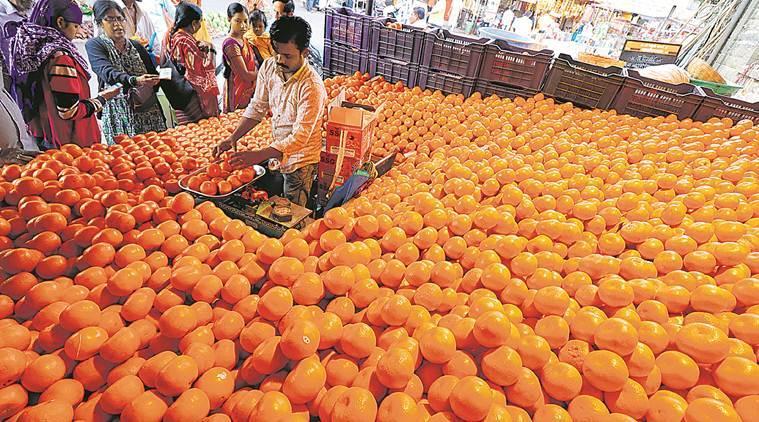 Fruit production triples in 13 years in Haryana