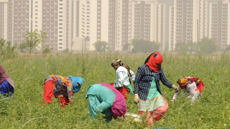 Micro-irrigation to start in two villages