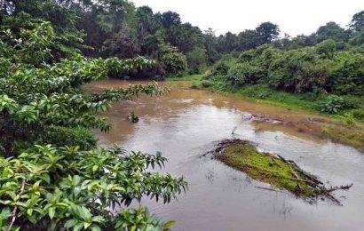 Streams, rivulets, riverslack usual grandeur