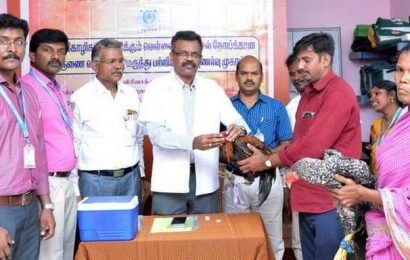 Veterinary college takes up chicken vaccination