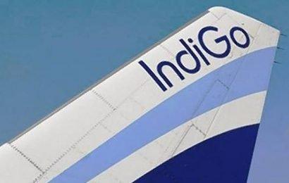 IndiGo announces daily flights to Vietnam