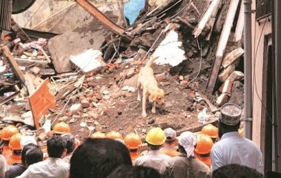 Mumbai building collapse: Sniffer dogs join search and rescue, identify air pockets in debris for NDRF team