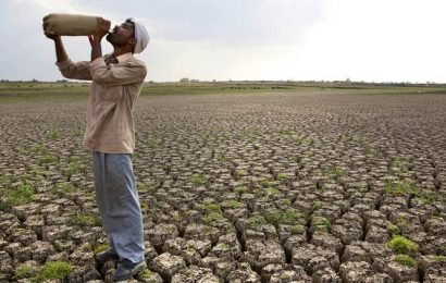 Vidarbha reels under agrarian crisis due to delayed and deficient rains