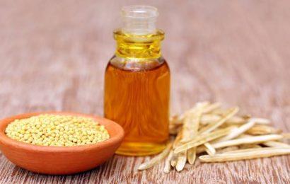 Mustard seeds capable of lighting LEDs: IISER Pune