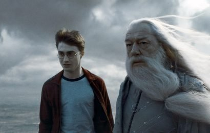 'Harry Potter' Fans Don't Want Remakes Of The Movies For This Big Reason