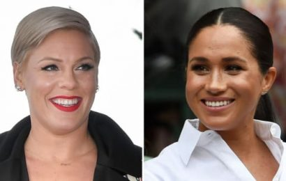 Pink Defends Meghan Markle: I've Never Seen Bullying Like This!
