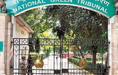 'Illegal constructions in Haridwar forest division to be removed'