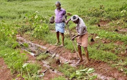 Kozhikode counts losses in rain havoc