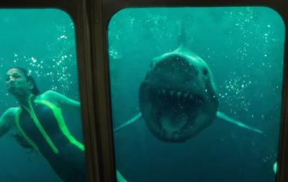 47 Meters Down Uncaged movie review: Dull as ditchwater