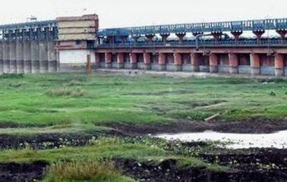 Rains revive kharif, improves water level in MI sources