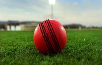 Cricket umpire dies a month after being hit by ball