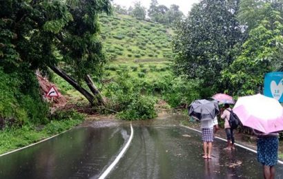 Kerala rains: Massive landslide hit Wayanad district, CM Vijayan says situation serious