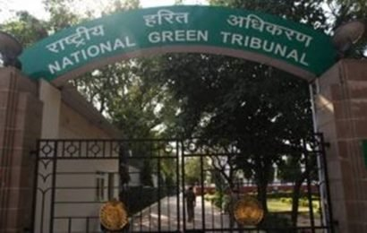 Ludhiana mayor, civic body head booked over Buddha Nullah pollution