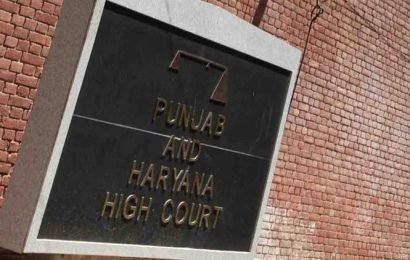 Chandigarh: Plea challenges extension to Punjab Agriculture University V-C, HC issues notice