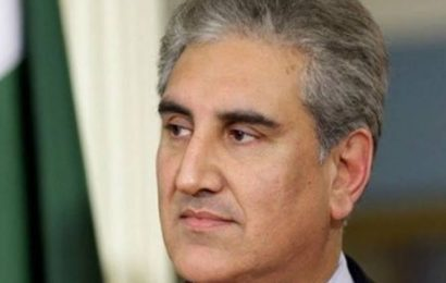 Pakistan Foreign Minister Qureshi criticises Rajnath Singh's remarks on PoK talks
