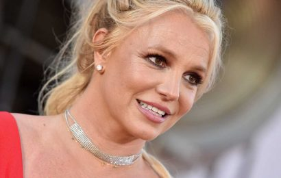 Britney Spears has a new conservator after father Jamie Spears steps down: Reports