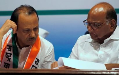 Nothing to worry, says Pawar after Ajit meets him