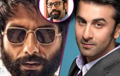 इस बड़ी वजह से Kabir Singh के डायरेक्टर Sandeep Reddy Vanga की अगली फिल्म साइन नहीं कर पा रहे हैं Ranbir Kapoor, जानिए कारण | Bollywood Life हिंदी