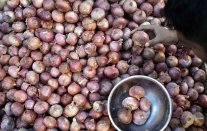 Taking all policy measures to stabiliseonion prices: Centre