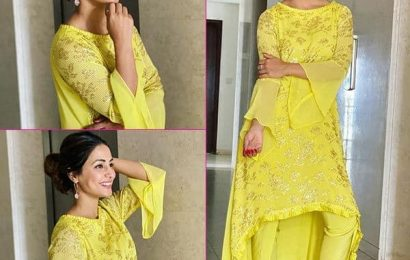 Hina Khan के देसी लुक ने त्योहारों के इस मौसम में लूटा फैंस का दिल, देखें ये खास Pics