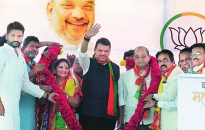Maharashtra: In sugar belt of Ahmednagar, party loyalty loses out to local cooperative politics