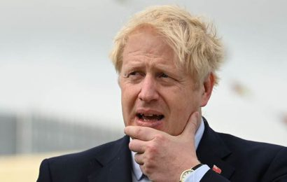 Violence and intimidation is wholly unacceptable: Boris Johnson on Kashmir protests on Diwali