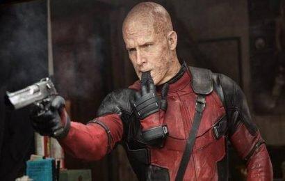 Ryan Reynolds congratulates Phoenix's 'Joker' team with curses