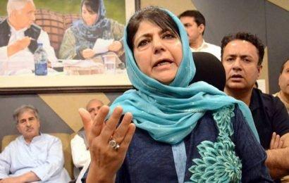 'Aarey trees > Kashmiri lives': Mehbooba Mufti takes dig at SC order