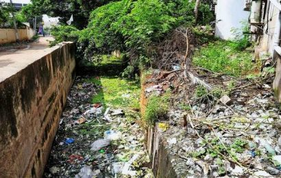 Vaigai: from lofty heights to a dismal carrier of urban refuse