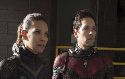 Paul Rudd back in third 'Ant Man' Marvel film; Peyton Reed to direct again