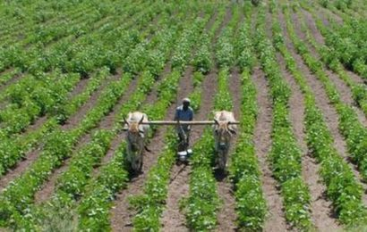 Farmers in a fog over loan waiver