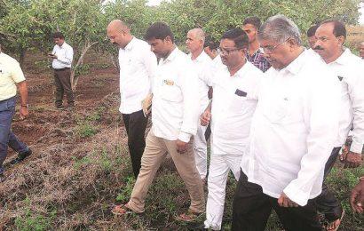 Finish panchnamas of rain-affected crops by tomorrow: Chandrakant Patil
