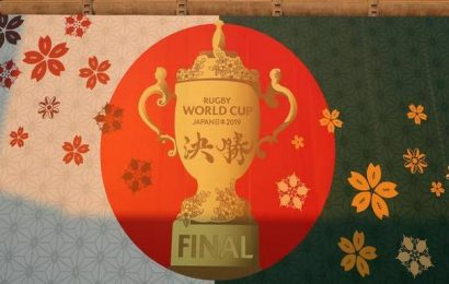 Rugby World Cup final: England faces daunting task against South Africa