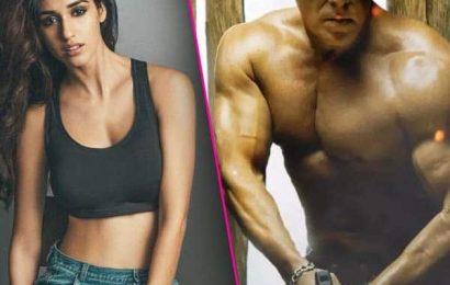 Confirm! एक बार फिर Disha Patani संग ऑन स्क्रीन रोमांस करेंगे Salman Khan, शुरू हुई Radhe- Your Most Wanted Bhai की शूटिंग | Bollywood Life हिंदी