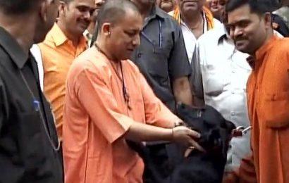 Yogi Adityanath's pet dog Kalu is an online sensation