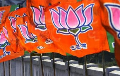 After Maharashtra, BJP wants to keep AIADMK in good humour: Analysts