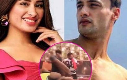 Bigg Boss 13: Mahira Sharma tries to pull down Asim Riaz's pants and we don't know how to react! – watch video   Bollywood Life