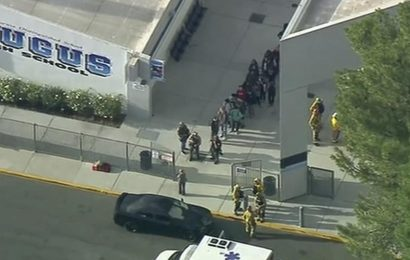 'Multiple victims' in school shooting near Los Angeles: official