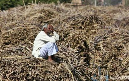 Gujarat govt jacks up relief package for crop-loss to Rs 3795 crore