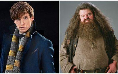 Eddie Redmayne wants Hagrid to star in Fantastic Beasts 3