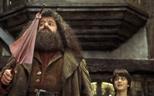 Eddie Redmayne wants Hagrid to be part of 'Fantastic Beasts 3' movie