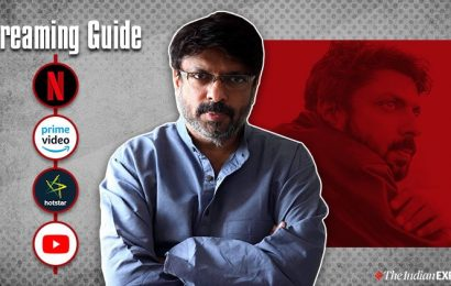 Streaming Guide: Sanjay Leela Bhansali movies