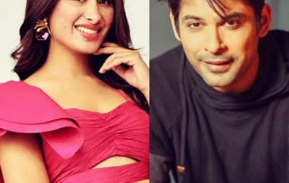 #WTFWednesday: Mahira Sharma taking digs at Sidharth Shukla's age made us roll our eyes and how | Bollywood Life