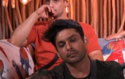 Bigg Boss 13: Does Sidharth Shukla DESERVE a loyal friend like Asim Riaz? – vote now | Bollywood Life